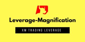 【XM】おすすめレバレッジ倍率とお得な使い方【小技】